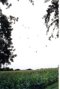 balloons3small