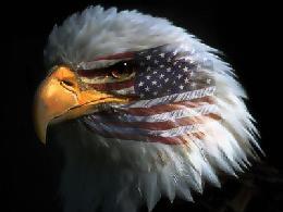 eagleheadflag