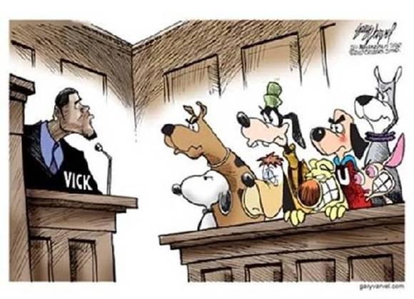 Michael Vick jury