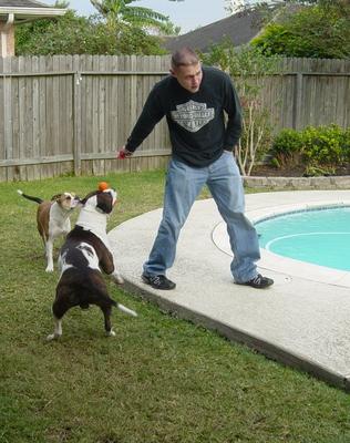 Jeremy & dogs
