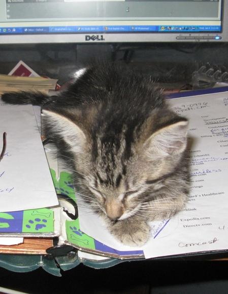 Sleeping on job