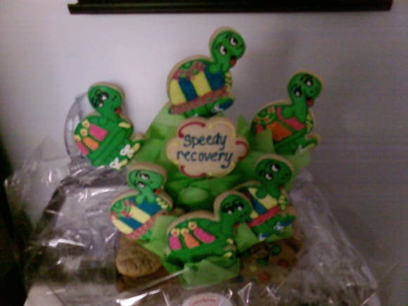 Turtlecookies